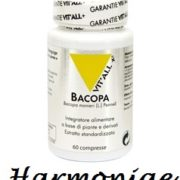 vi-bacopa_5471f626-f8eb-4979-8e57-20d82ae501f4