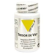 vi-tresor-de-vie_tresordevie