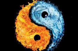 yin-yang-263x174 Home Page